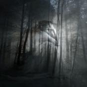 Lurid Dreams - Details